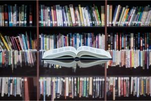 Het verbeteren van uw projectorganisatie (boek)